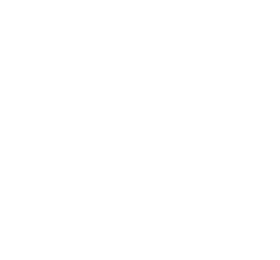 icon-03-vitrine-v2